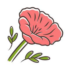 california poppy red color icon papaver rhoeas vector image