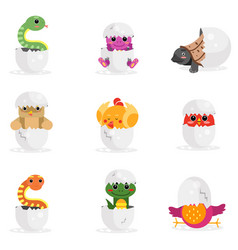 cute newborn animal characters set funny reptiles vector image