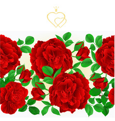 floral border seamless background red roses vector image