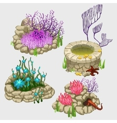 Flower beds with various corals and plants vector