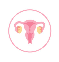 Isolated of uterus vector