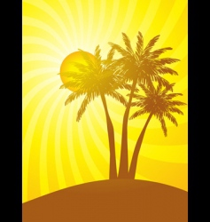palm trees with tropical sunset vector image
