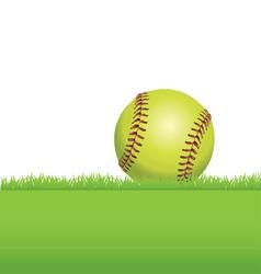 softball in grass vector image