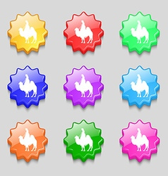 Camel icon sign symbol on nine wavy colourful vector