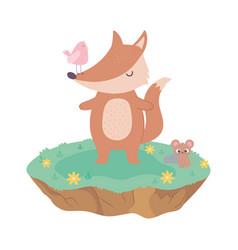 Cute fox bird and mouse animals adorable vector