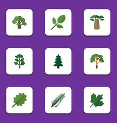Flat icon bio set of foliage wood oaken and vector