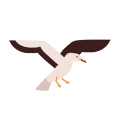 flying seagull flat marine vector image
