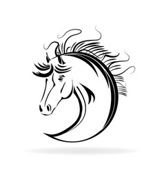 horse animal portrait outline icon vector image