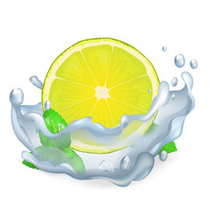 Juicy lemon or lime and leaves of peppermint icon vector