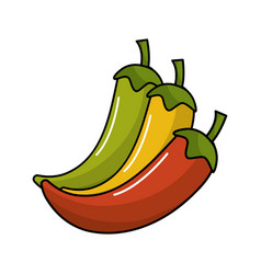 yellow red and green chili pepper icon vector image
