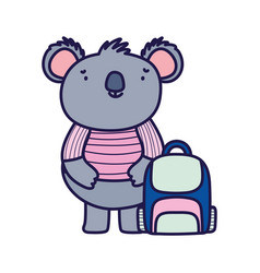 cute koala with shirt and speech bubble cartoon vector image