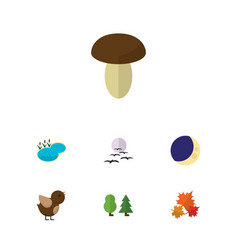 Flat icon ecology set of canadian champignon vector
