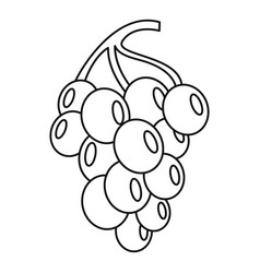 grape for wine icon outline style vector image