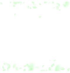 green flower petals falling down vector image