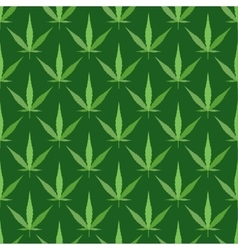 Marijuana seamless pattern vector