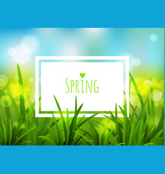 nature spring background vector image