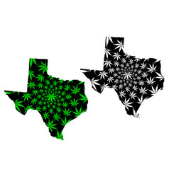 Texas - map is designed cannabis leaf vector