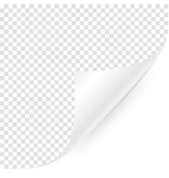 curled corner with shadow on transparent vector image
