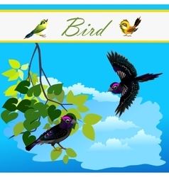 Bird on branch and bird flying in the sky vector
