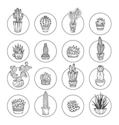 Doodles cacti and succulent icon set vector