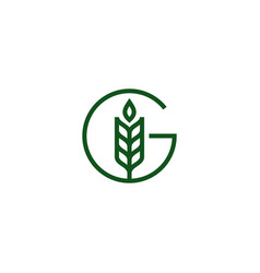 G letter wheat grain logo icon vector