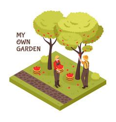 gardening isometric concept vector image