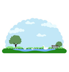 landscape of a park with a lake and ducks vector image