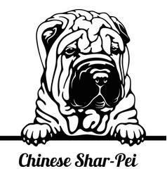 peeking dog - breed - head vector image