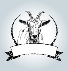 Vintage label with drawing goat vector