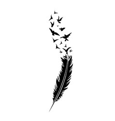 black-and-white feather on white backround vector image vector image