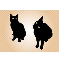 black cats on the background vector image vector image