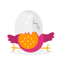 cute newborn bird character funny chick in egg vector image