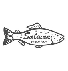 salmon icon saltwater fish isolated on white vector image vector image