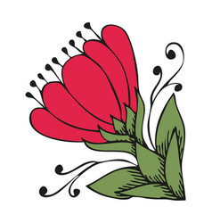 ancient flower like magnolia in celtic style vector image