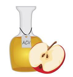 Apple cider vinegar and a half of an apple vector