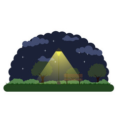 landscape of a park at night vector image