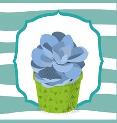Succulent desert plant in frame vector