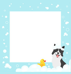 video and photo frame background vector image