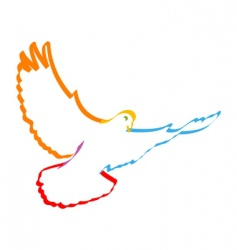 colorful dove vector image vector image