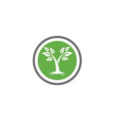 tree icon logo template vector image vector image