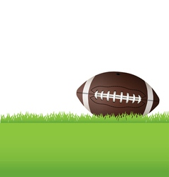 American Football Sitting in Grass vector image vector image