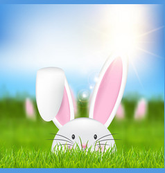 easter bunny in grass vector image