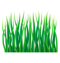 eco grass icon realistic style vector image