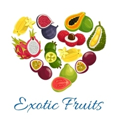 Exotic fruits heart shape symbol with fruit icons vector