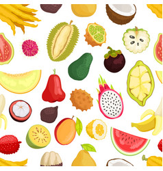 seamless pattern tropical fruits isolated vector image