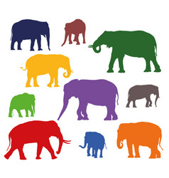 Set of colorful elephants silhouettes vector