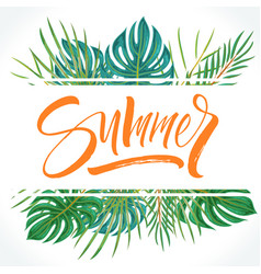 summer lettering on tropical palm leaves vector image