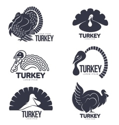 Set of turkey stylized graphic logo templates vector image vector image