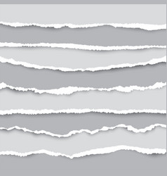 a set torn pieces paper in many size used vector image