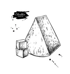 Cheddar cheese drawing hand drawn food vector